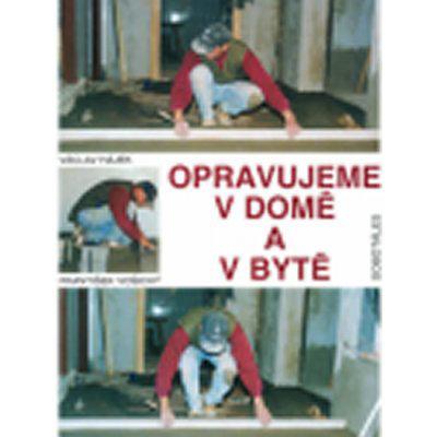 Opravujeme v domě a v bytě - Václav Hájek